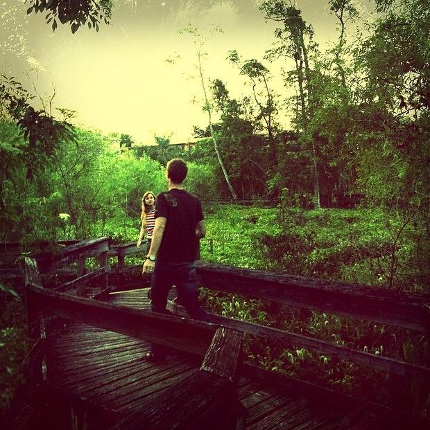 Free Nature Walk In Orlando