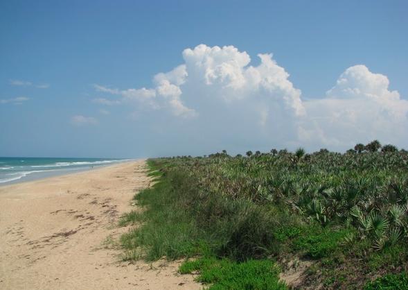Playalinda has beautiful sand dunes that feel like you're in an isolated beautiful island.